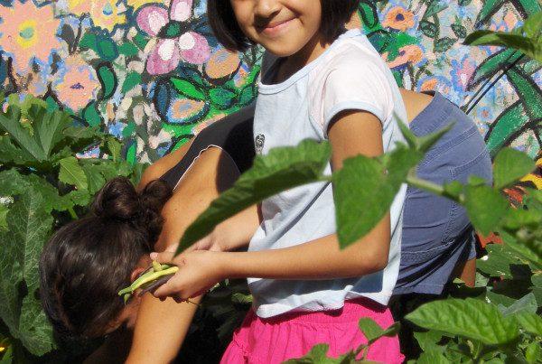 2008 - Girl Smiling and Picking Beans - Casa Verde
