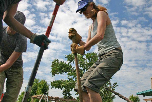 2009---Volunteers-Digging-at-Atlantis