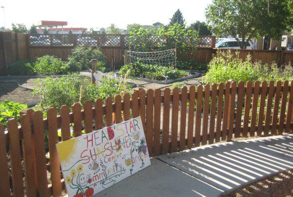 2014 - Sunshine Center Full Garden