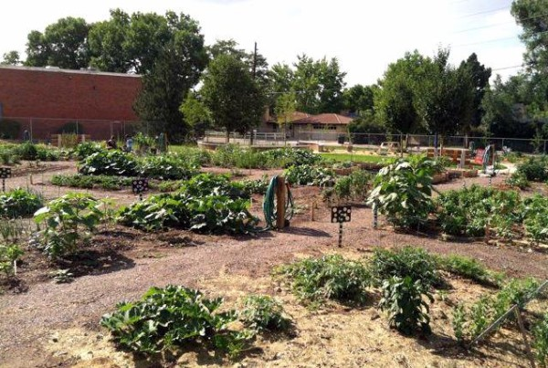 ClaytonCommunityGarden2