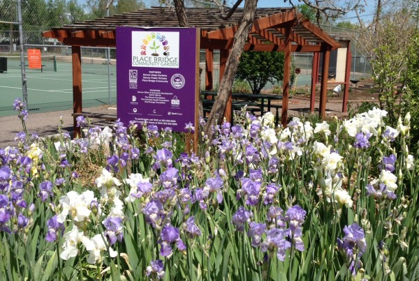 2014 - Place Bridge - Sign and Irises