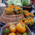 2013 - HB Market tomatoes and cabbage 2