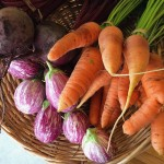 2014- HB - Eggplants & Carrots
