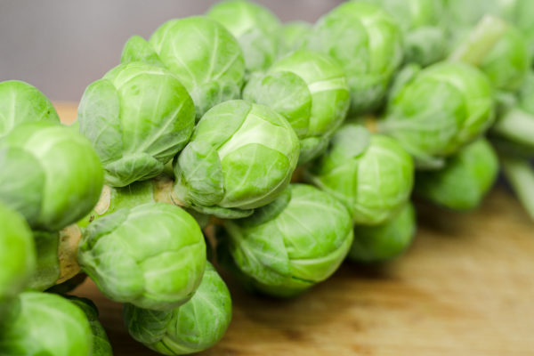 Dagan Brussel Sprouts